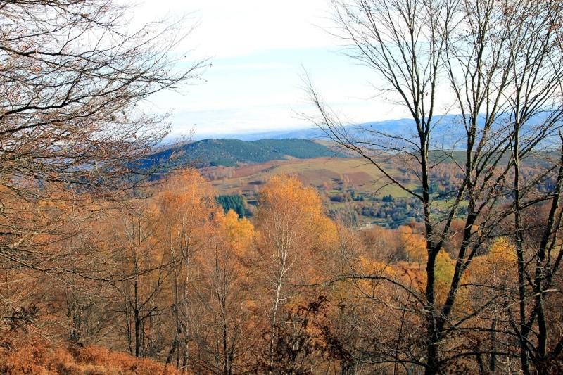 Les couleurs de l'automne... Img_4045