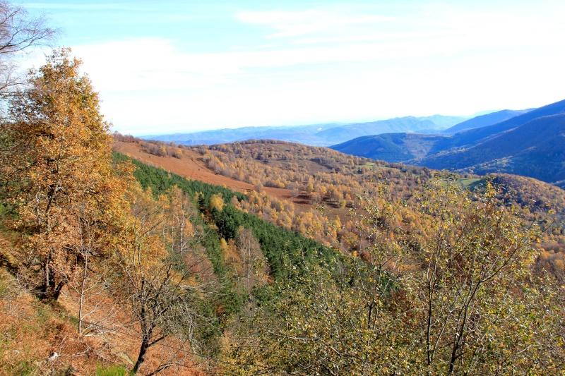 Les couleurs de l'automne... Img_4047