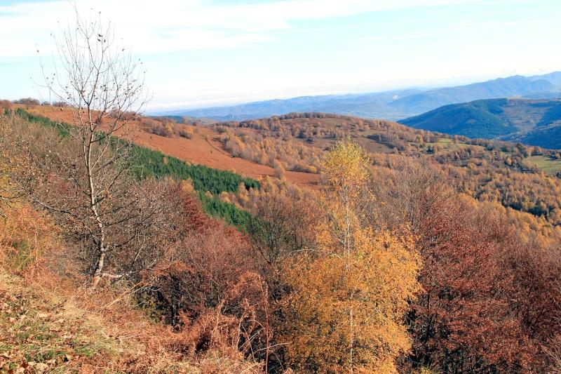 Les couleurs de l'automne... Img_4048