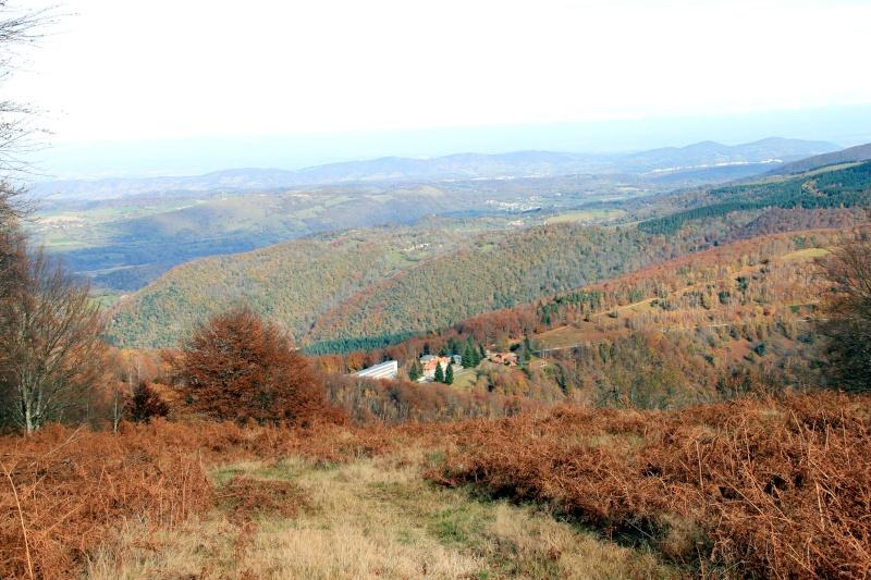 Les couleurs de l'automne... Img_4111