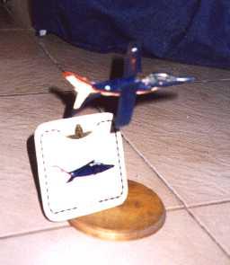 Modelismo Aeronaval - Armada Argentina - Página 3 Pampag10
