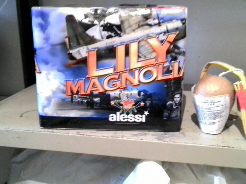 Lilly magnolia Big ALESSI  34413