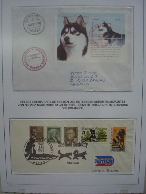 Husky`s und Wölfe  Ausste12