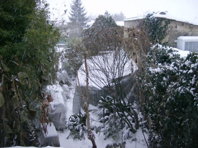 Aléas climatiques Photo_62