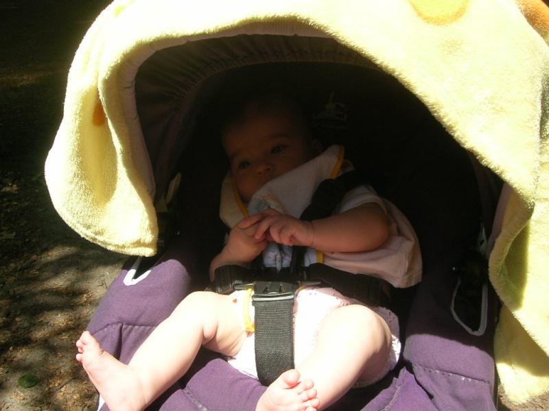 Barbizon 77 - Pique-nique en famille le dimanche 27 mai 2012 Dscn6622