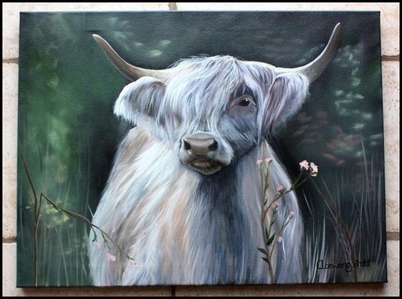 Votre Highland sur une toile... Peintu11
