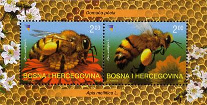 Motiv Bienen und Hummeln Ba002210