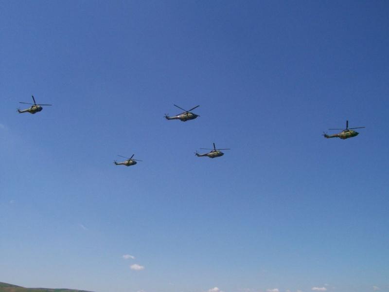 Campia Turzii 2008 223