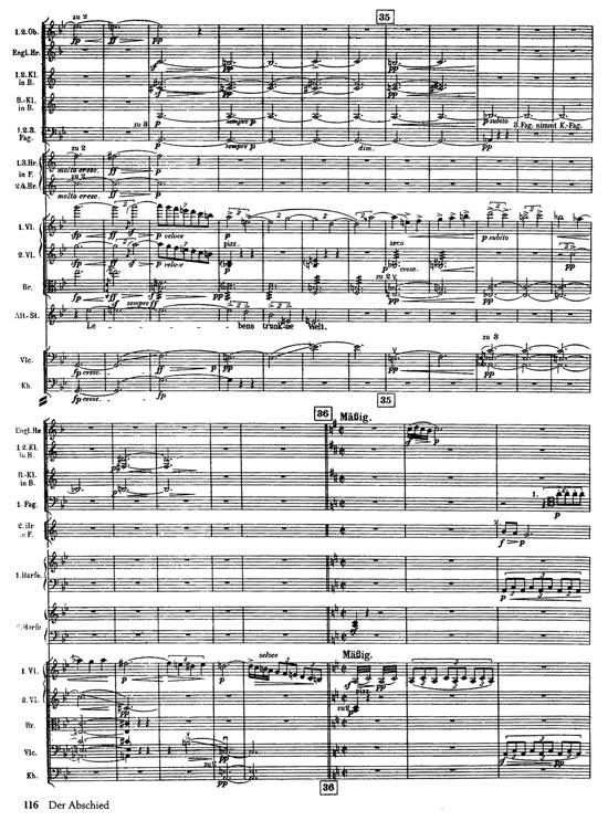 Cata ciega: La canción de la tierra Score11