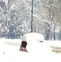 AMARCORD!!!  PECCATO NN ESSERCI STATO Nevica10