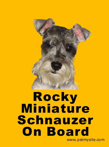 House of Miniature Schnauzers - Page 5 Onboar11