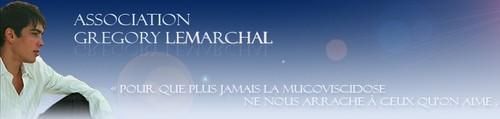 Association Grégory Lemarchal = La mucoviscidose Bannie11