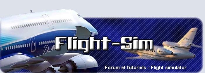 Flight-Sim