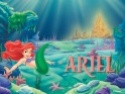 DISNEY PRINCESS Ariel_10