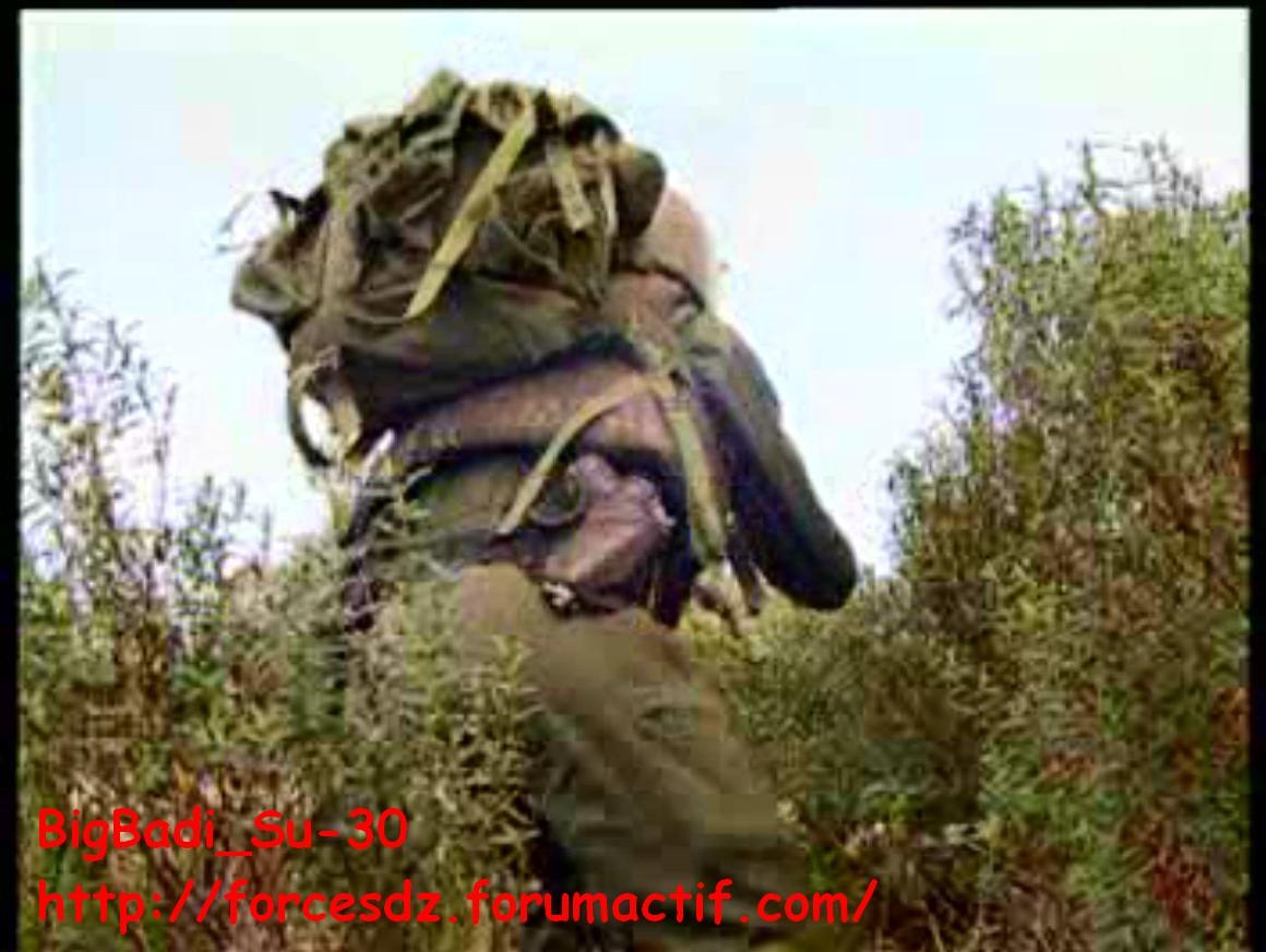 موسوعة الصور الرائعة للقوات الخاصة الجزائرية - صفحة 4 Pdvd_340
