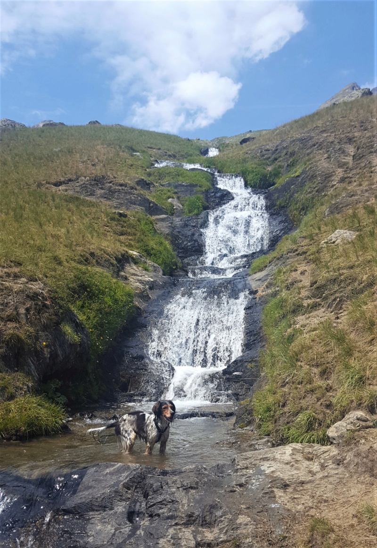 Balades/Rando dans les Alpes été 2019 20190746