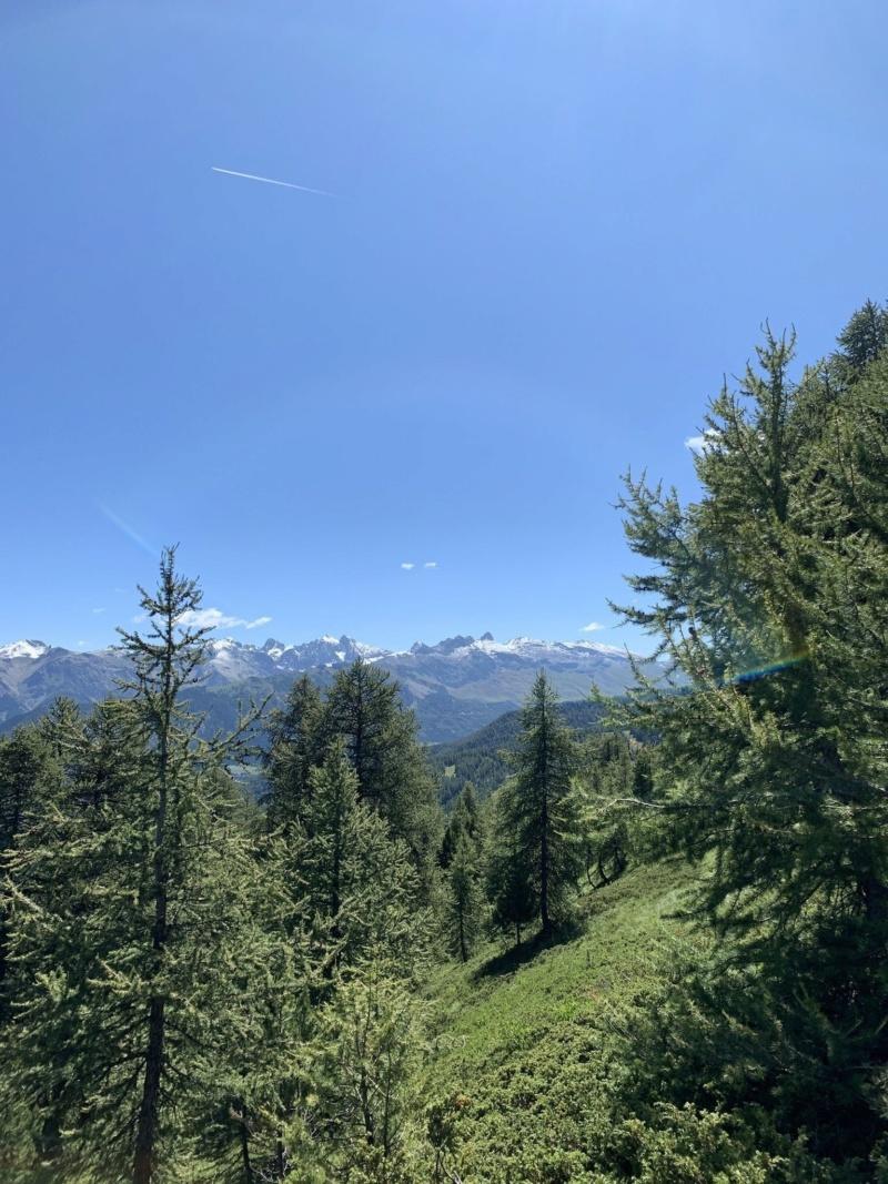 Balades/Rando dans les Alpes été 2019 Extra_16