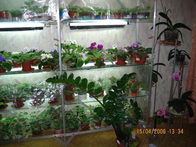 Изображение, размещенное на servimg.com