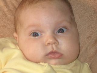 Les yeux de bébé - Page 2 Img_2610