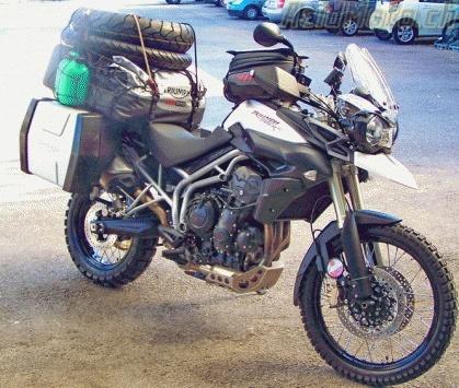 Choix moto pour concentre hivernale Tiger_10