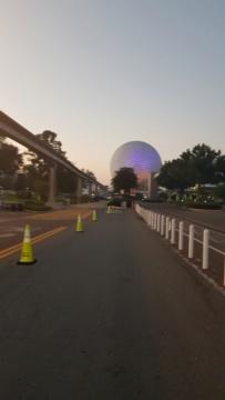 Le rêve est devenu réalité... Kennedy Space Center, WDW, Ste Pete, Fort Myers, Everglade et finalement Miami - Page 6 20181106