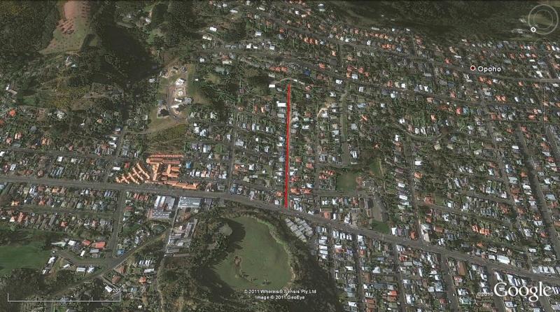Baldwin Street : la rue la plus pentue du monde, Dunedin - Nouvelle Zélande Bug16