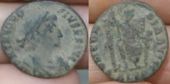 romaine a idkentifier 6924610