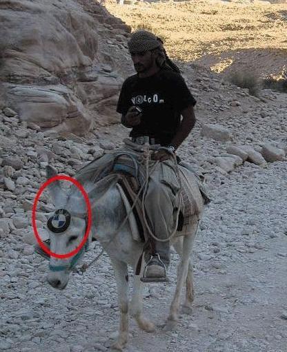 News BMW 4 pattes  Arabis10