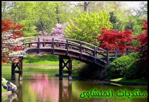(الاعتدال الربيعى) نبذه عن الإعتدال الربيعي - صور الاعتدال اربيعى spring equinox  13321918
