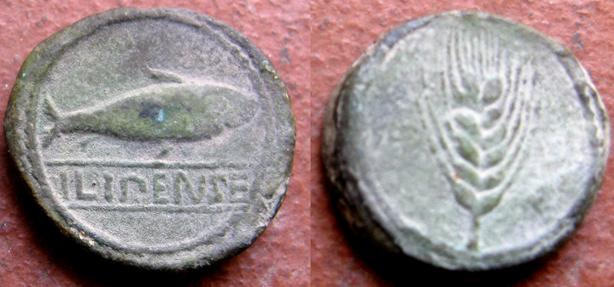 ILIPENSE 1617