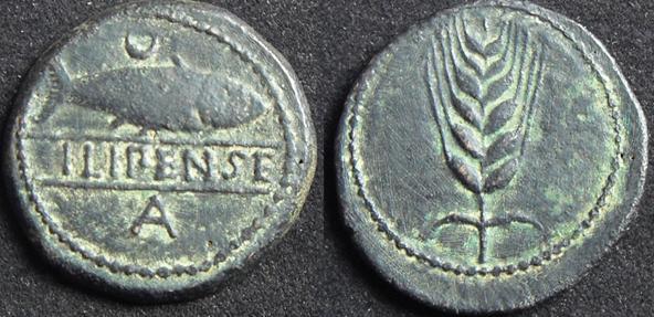 ILIPENSE 1733