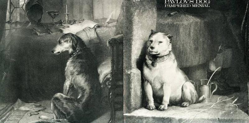 PAVLOV'S DOG STORY Pavlov10