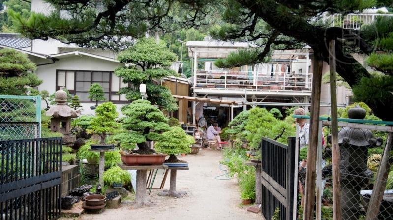 Japan 2011 - Seijyu-en in Hiroshima Alb_7825