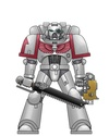 [Fluff] Space Marines Codex : les Chapitres 5_whit10