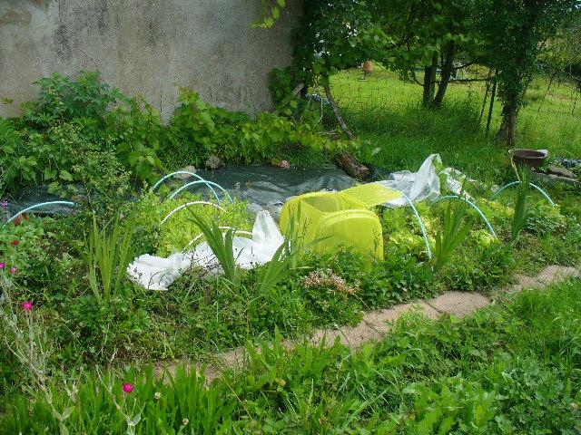 Images et photos, anecdotes, souvenirs et environnement Yugcibien P1100816