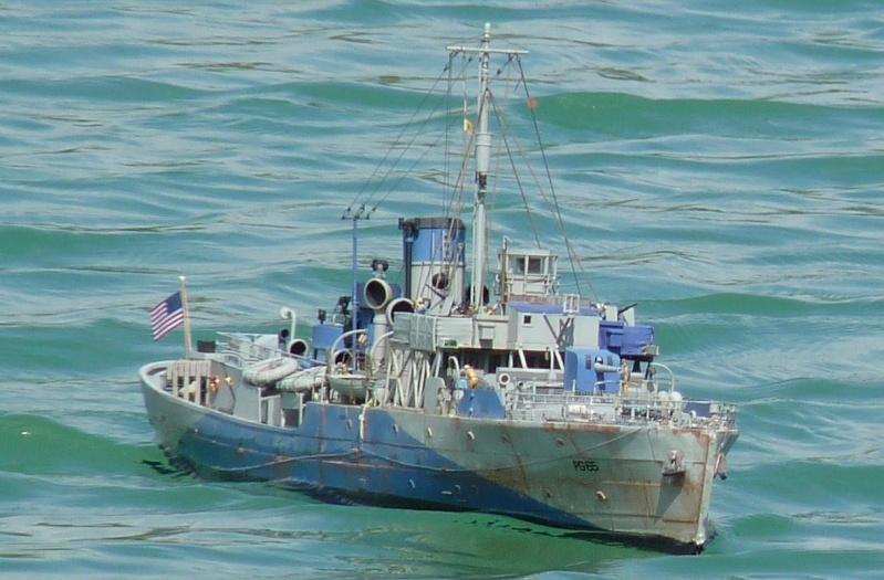 USS Saucy une Flower aux couleurs US . P1020218