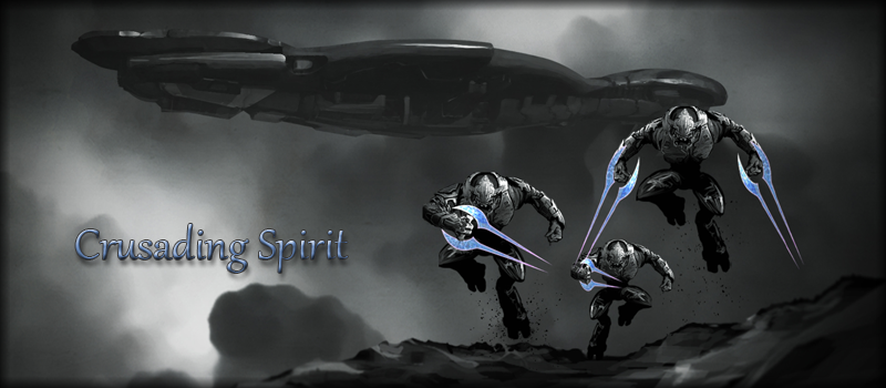 The Crusading Spirit Fleet