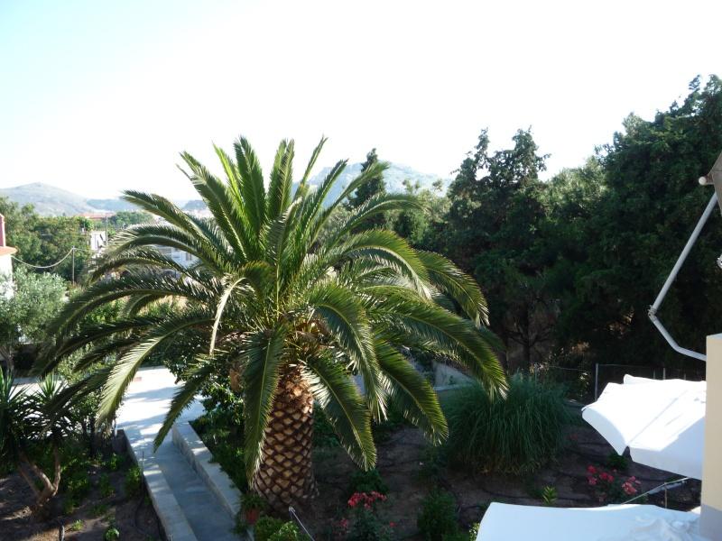 Greece, Island of Limnos, Myrina, Sotiris Apartments 04813