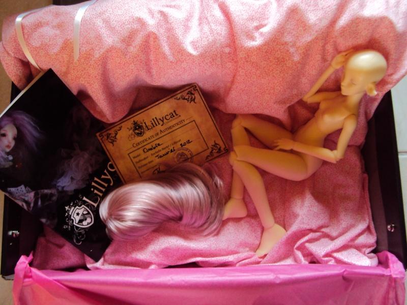 Pétale mon elfe (Ombre de Lillycat Cerisedolls) p5 ses dessous Dsc01914
