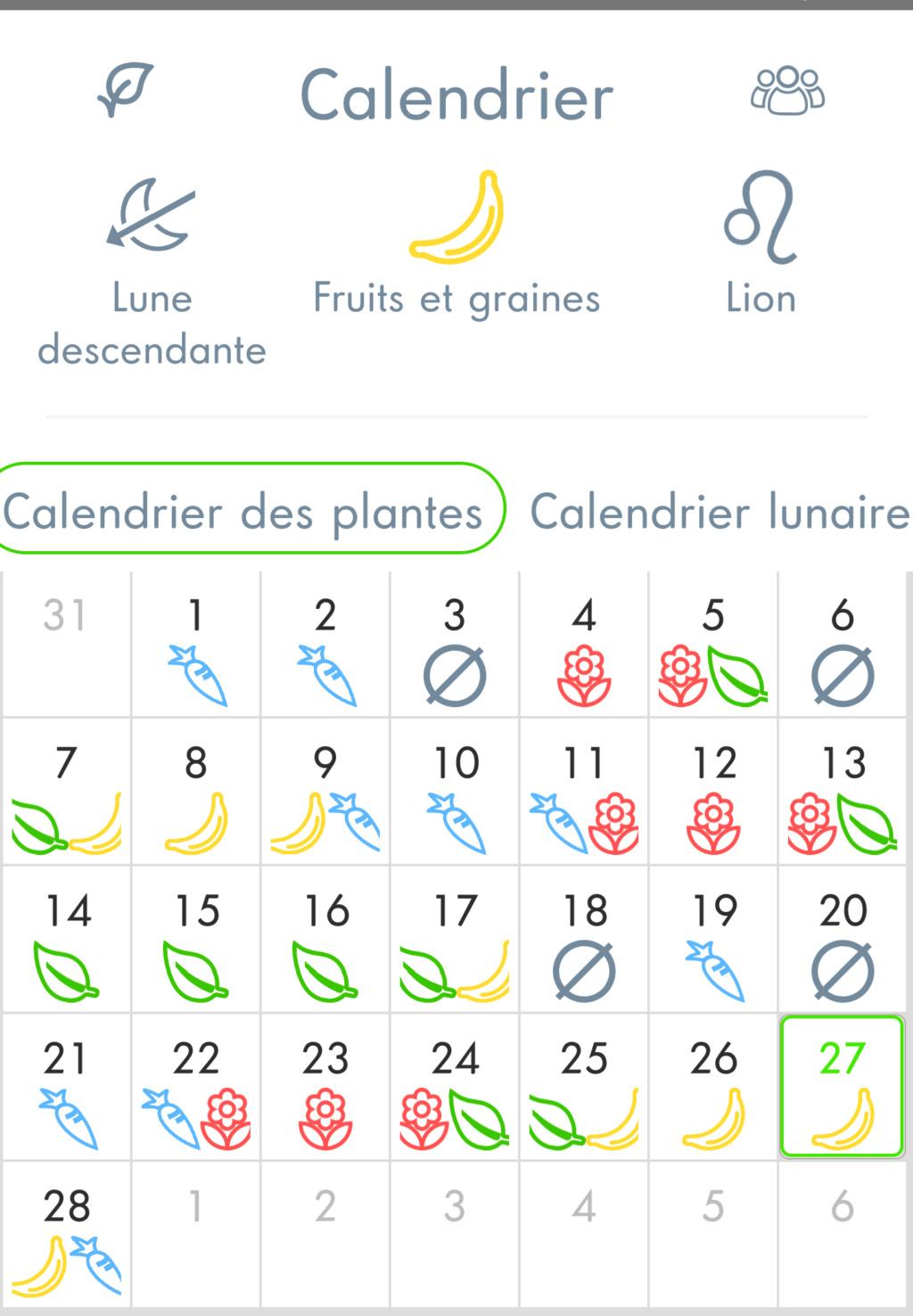 Vos plantes, fleurs, jardin !  - Page 27 Scree127