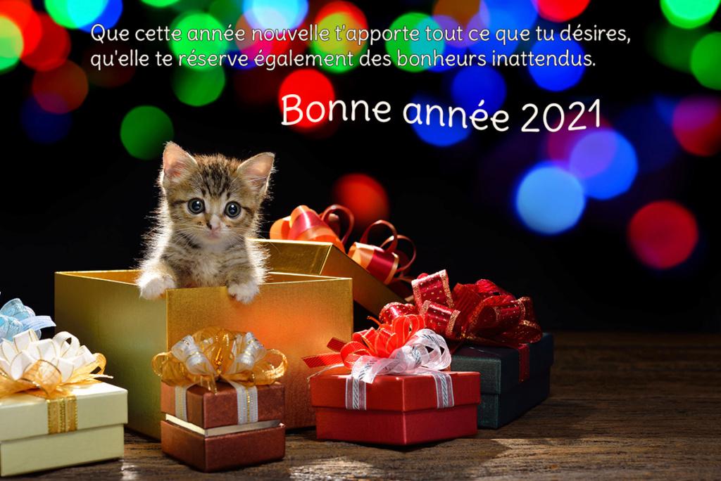 Bonne et heureuse année 2021 Souhai12