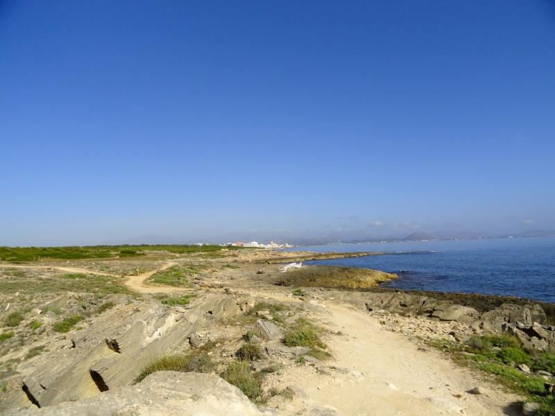 Ca'n Picafort, Son Baulo area, walk to Son Serra de Marina Dsc03027