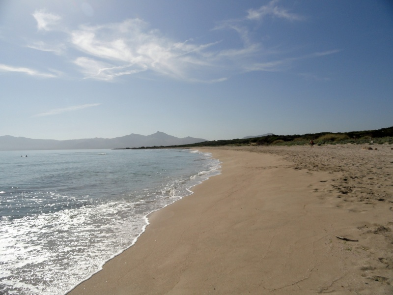 Ca'n Picafort, Son Baulo area, walk to Son Serra de Marina Dsc03120