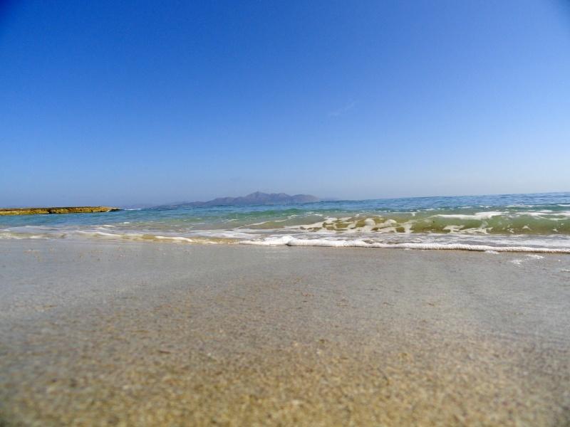 Ca'n Picafort, Son Baulo area, walk to Son Serra de Marina Dsc03121