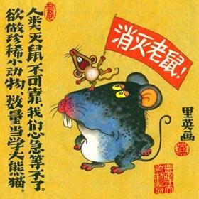 L'année du dragon Rat10