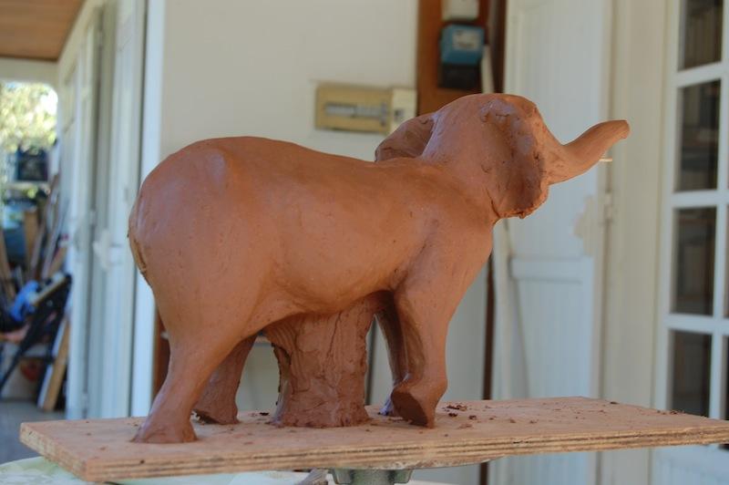 conseils pour un éléphant Dsc_4518