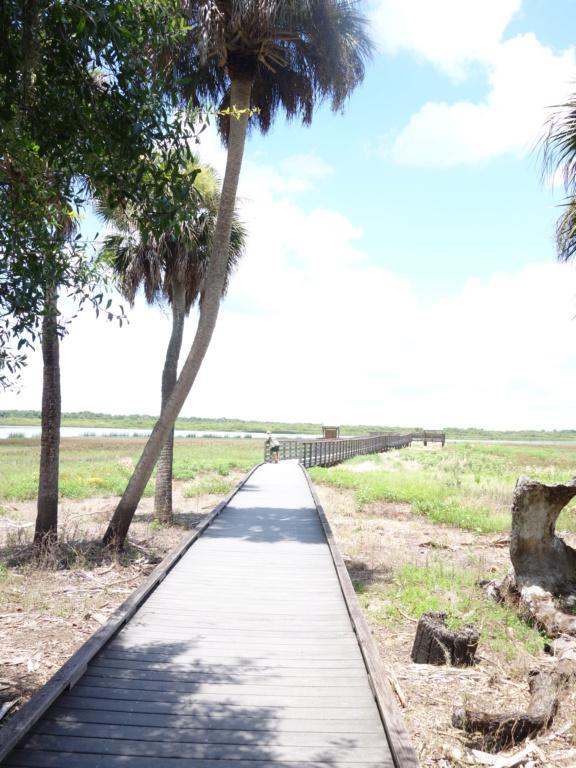 Floride Juillet 2019 : De nouvelles aventures en famille - Page 2 Dsc07313