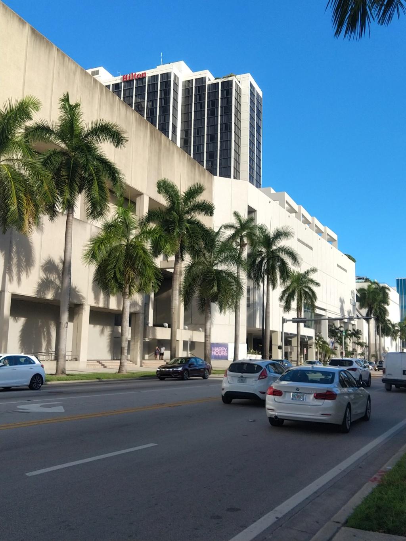 Floride Juillet 2019 : De nouvelles aventures en famille Img_2019