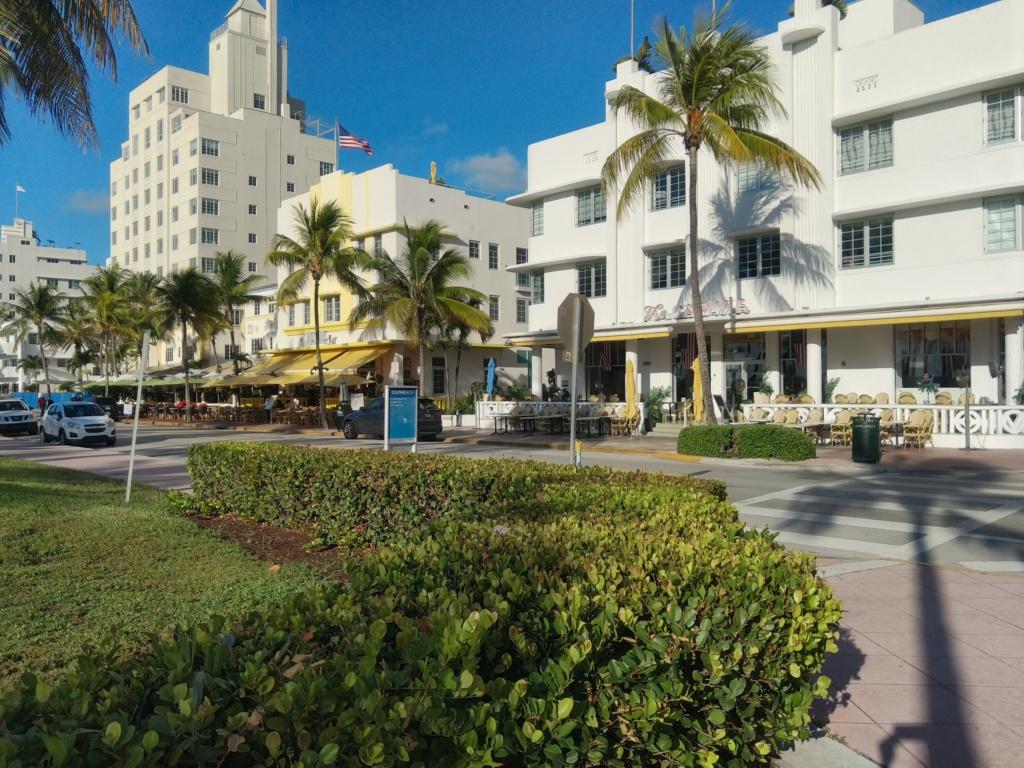 Floride Juillet 2019 : De nouvelles aventures en famille - Page 2 Img_2035