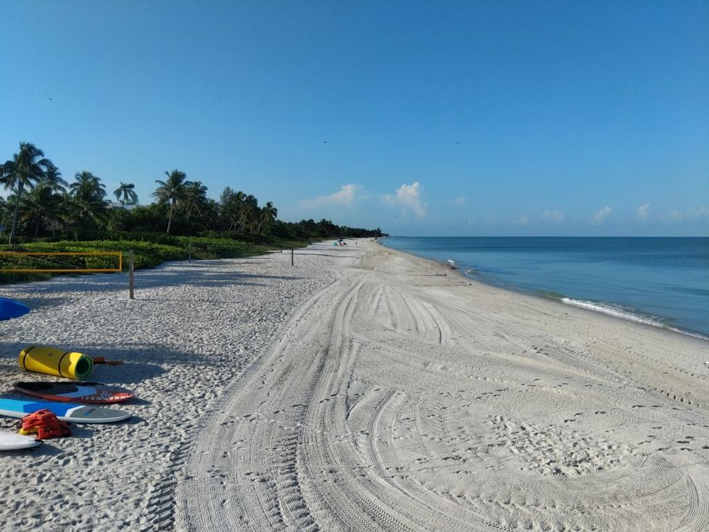 Floride Juillet 2019 : De nouvelles aventures en famille - Page 2 Img_2062